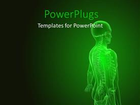 PowerPoint template displaying human anatomy with scan of the human body showing skeletal system