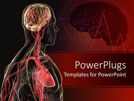 Slide deck featuring human body anatomy with brain, blood vessels, heart with red EKG brain background