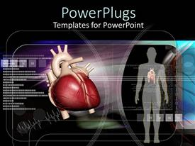 PowerPlugs: PowerPoint template with human body and heart on black scientific looking background