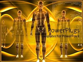 PowerPoint template displaying human Body Structure