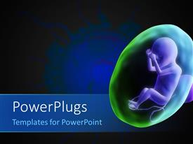 PowerPoint template displaying human fetus with sperms around the egg cell