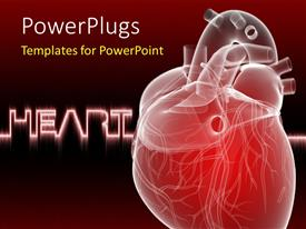 PowerPoint template displaying human heart anatomy with keyword in background