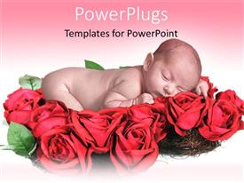 PowerPlugs: PowerPoint template with innocent looking baby sleeping on lots of red roses