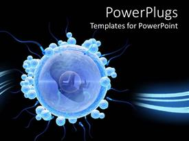 PowerPoint template displaying isolated egg cell with embryo on black background