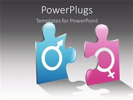 PowerPoint template displaying jigsaw puzzle pieces with male and female gender symbols engraved on it