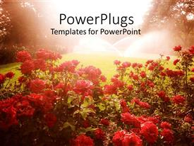 PowerPlugs: PowerPoint template with landscape with red flowers, green grass lawn being watered by sprinklers