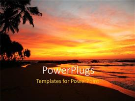 PowerPoint template displaying lAndscape of tropical beach with palms and sunset on horizon