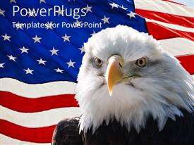 PowerPlugs: PowerPoint template with large black and white  eagle with a USA flag background
