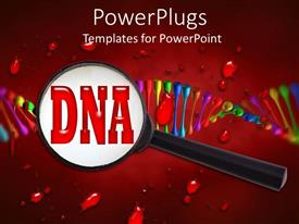 Audience pleasing design featuring large magnifying glass on red word DNA with colorful abstract DNA strand on blood and red background