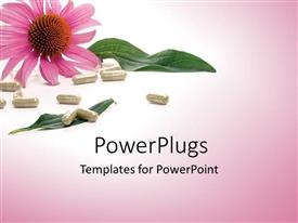 PowerPlugs: PowerPoint template with a large pink colored flower white pills on the floor