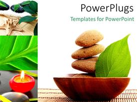 PowerPoint template displaying a leaf a number of zen stones in a bowl with white background