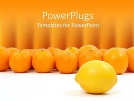 PowerPoint template displaying lemon and oranges on white and orange background