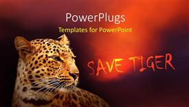 PowerPoint template displaying a tiger with a reddish background