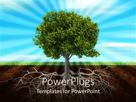 PowerPlugs: PowerPoint template with life roots and green trees nature  green grass sunshine light behind tree  blue and soil background