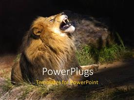 PowerPlugs: PowerPoint template with a lion roaring with a stone in the background