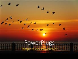 PowerPlugs: PowerPoint template with a lot of birds heading to their nests with sunset in the background