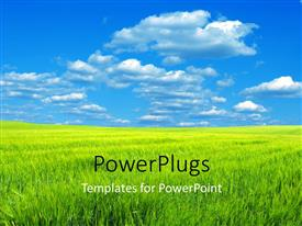 PowerPlugs: PowerPoint template with a lot of grass and clouds in the background