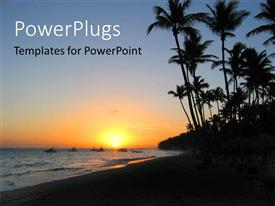 PowerPoint template displaying a lot of palm trees on the beach with sea in background