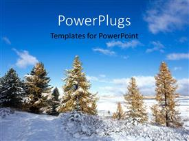 PowerPlugs: PowerPoint template with a lot of trees and snow during winter