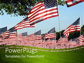 PowerPlugs: PowerPoint template with lots of American flags on a wide green grass field