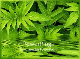 PowerPoint template displaying lots of green long leaves with a blurry replica