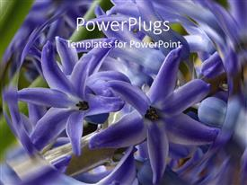 PowerPlugs: PowerPoint template with lots of purple flowers with a swirling blurry background