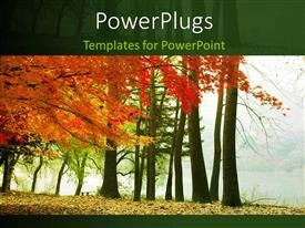 PowerPoint template displaying lots of red and green trees with a foggy weather