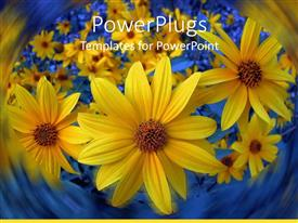 PowerPlugs: PowerPoint template with lots of sun flowers with a lurry blue background