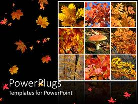 PowerPlugs: PowerPoint template with lots of tiles with dried autumn leaves and black background