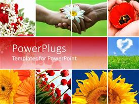 PowerPlugs: PowerPoint template with lots of tiles with hands shaking and different flowers