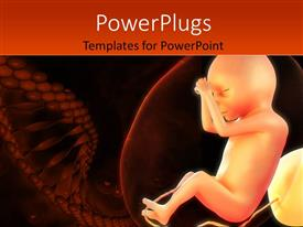 PowerPoint template displaying medical depiction of a human fetus and cells
