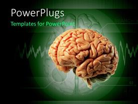 PowerPlugs: PowerPoint template with model of a brain against medical technology background
