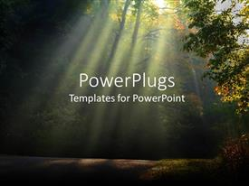 PowerPoint template displaying the morning sunlight coming through the leaves of the trees