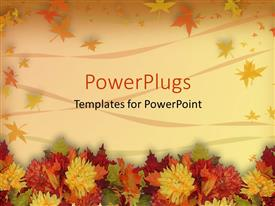 PowerPoint template displaying multicolored autumn leaves with orange yellow red green fall colors on a natural background