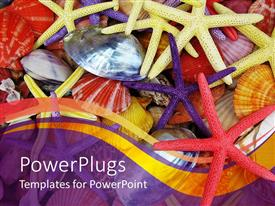 PowerPlugs: PowerPoint template with multiple colorful star fish and sea shells with purple background