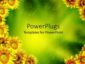 PowerPlugs: PowerPoint template with multiple yellow sunflowers on edges with green background at center
