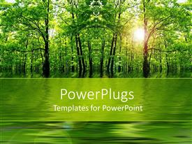 PowerPlugs: PowerPoint template with natural beauty