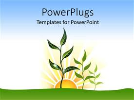 PowerPoint template displaying a numbe rof plants and sunrise in background
