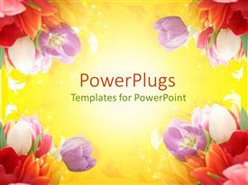 PowerPoint template displaying a number of colorful flowers with place for text in the middle