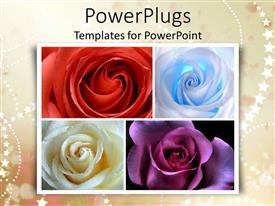 PowerPlugs: PowerPoint template with a number of colorful flowers with stars in the background