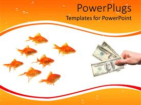 PowerPlugs: PowerPoint template with a number of dollar notes with a lot of goldfish