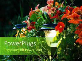PowerPlugs: PowerPoint template with a number of flowers with blackish background