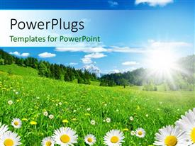 PowerPlugs: PowerPoint template with a number of flowers with clear sky in background