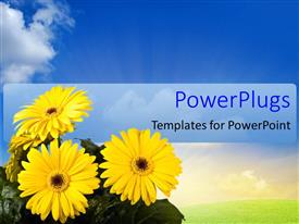 PowerPlugs: PowerPoint template with a number of flowers with leaves and bluish background