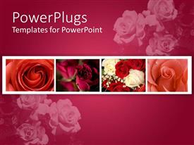 PowerPlugs: PowerPoint template with a number of flowers with pinkish background