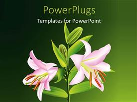 PowerPlugs: PowerPoint template with a number of flowers on a plant and greenish background