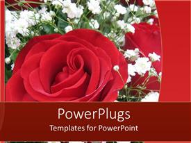 PowerPoint template displaying a number of flowers with a reddish background
