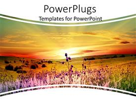 PowerPlugs: PowerPoint template with a number of flowers with sunset in the background