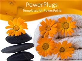 PowerPoint template displaying a number of flowers with zen stones