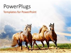 PowerPlugs: PowerPoint template with a number of horses running with clouds in the background
